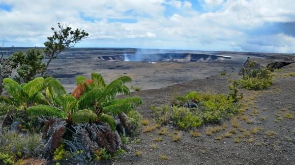 hawai 20.JPG