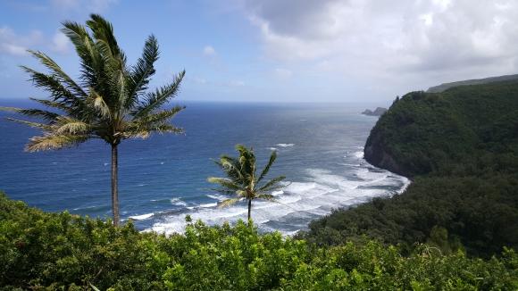 hawai 07.jpg
