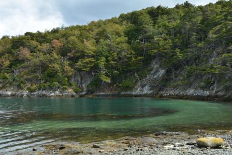 parc national de la Terre de Feu 20.JPG