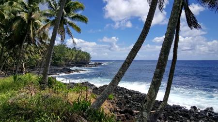 hawai 09.jpg