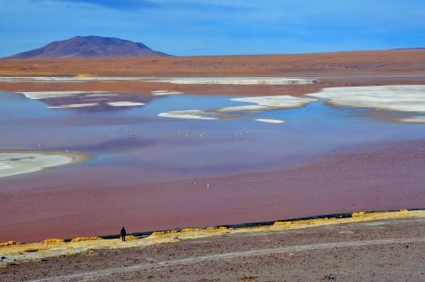laguna colorada 09.jpg