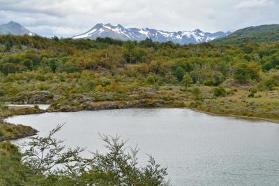 parc national de la Terre de Feu 17.JPG