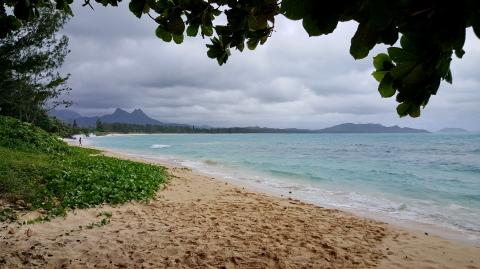 Oahu 11.jpg