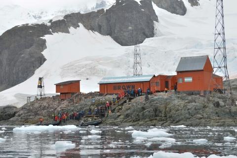 Baie Paradis Base argentine Brown _12.JPG