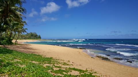 kauai 35.jpg