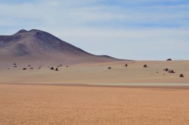 d) désert de dali_0.JPG