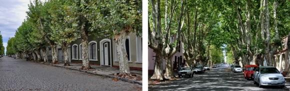 colonia del sacramento uruguay_29.jpg