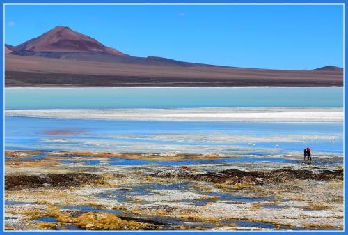 Laguna brava 19.jpg