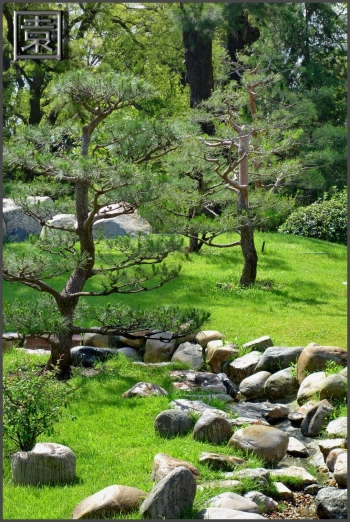 jardin japones buenos aires_10.JPG