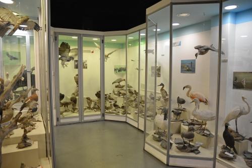 03b) Le Musée Territorial 04.JPG