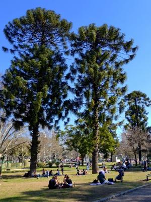 Parque centenario buenos aires_03.JPG