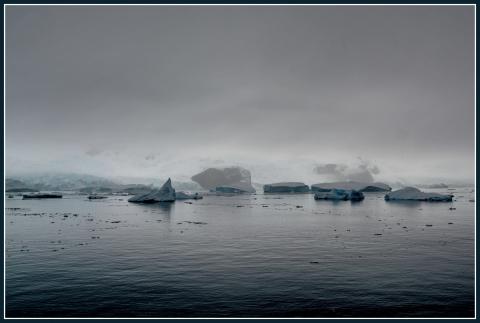 Danko Island 23.JPG