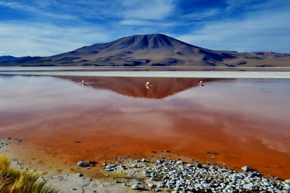 laguna colorada 08.jpg