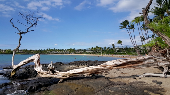 hawai 03.jpg