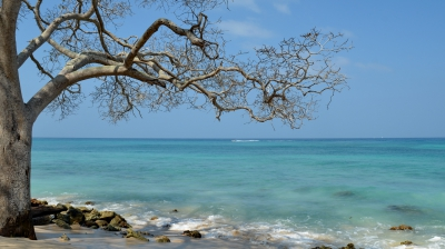 Playa blanca 06.JPG