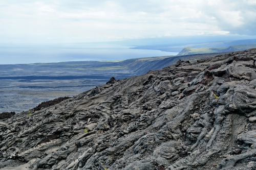 hawai 23.JPG