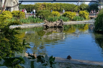 zoo buenos aires_30.JPG