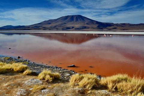 laguna colorada 16.JPG