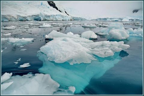 Baie Paradis Base argentine Brown _18.JPG