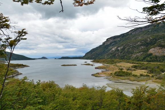 parc national de la Terre de Feu 23.JPG