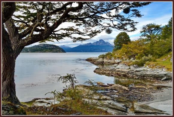 Parc national Tierra del FuegoJPG.jpg