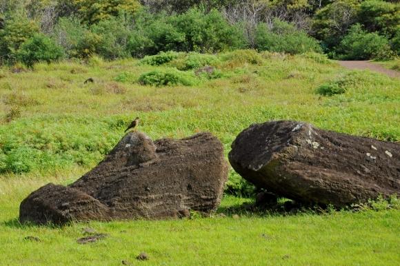 moai renversés ile de paques_05.JPG