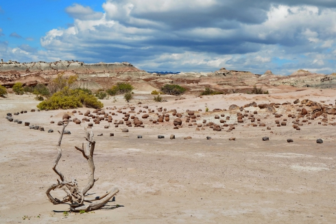 09) ischigualasto 14.jpg
